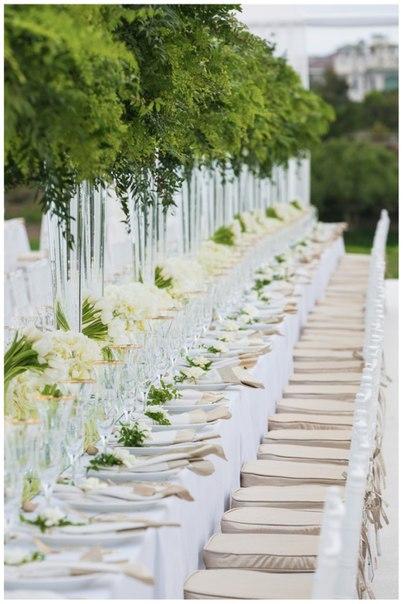 затишне весілля в шатрі на природі