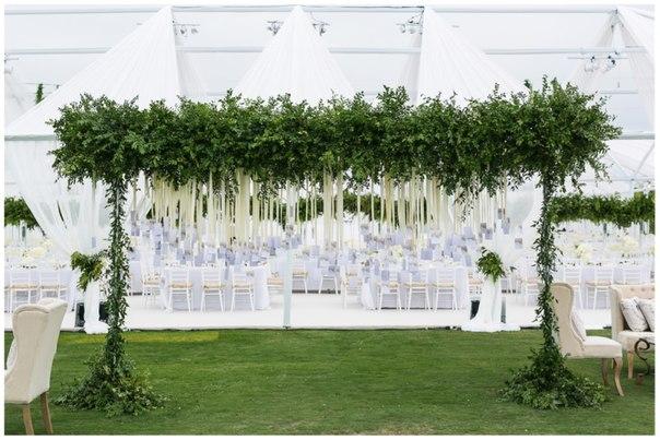 шатро весілля (8)