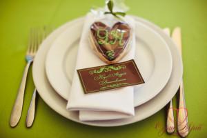 весілля Замок Лева - Зелені пагорби (17)