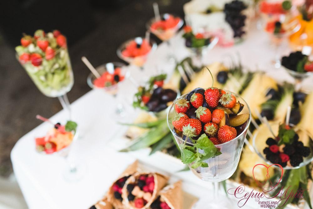 весілля львів ресторан Зелені Пагорби Замок Лева (65)