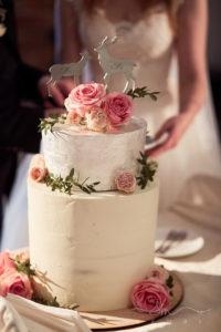 весільні торти на стилізоване весілля